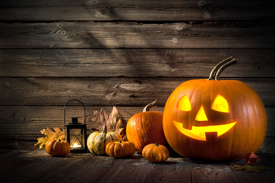 Caregiver in Johns Creek GA: Green Ways to Get Rid of Your Senior's Halloween Pumpkins