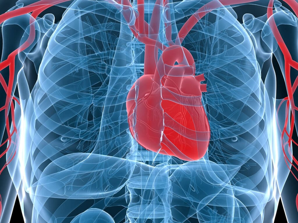 Homecare in Gainesville GA: Parent With Heart Disease